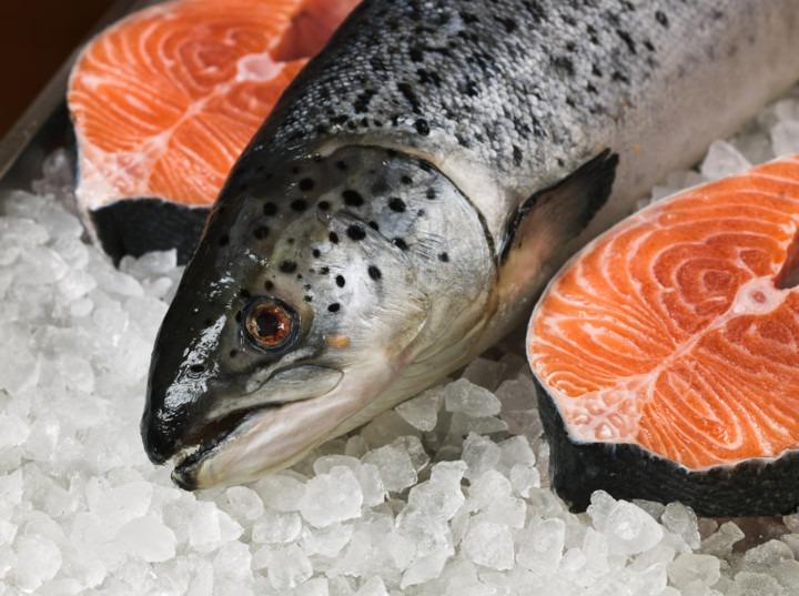 Риба масового ураження: шокуючі факти по норвезький лосось (ВІДЕО)